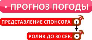 dfm_prognoz-pogody_struktura