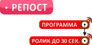 dfm_repost_struktura